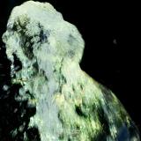FPR_Jet-d'eau-1